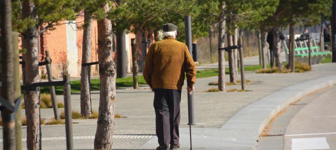 Certyfikat Gmina OK Senior